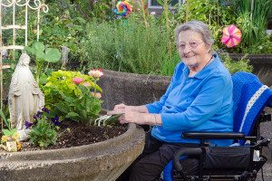 bigstock-Happy-Gardener-In-A-Wheelchair-52515658-300x200 5 Safe and Fun Activities to Do with the Senior Who Needs Home Care to Welcome in Spring!