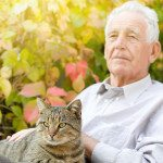 3 Things You Might Not Have Considered about Owning a Cat when Relying on Elder Care