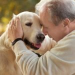 Caregiver in Folsom CA: Pets and the Holidays